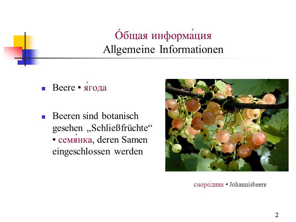 Óбщая информа́ция Allgemeine Informationen