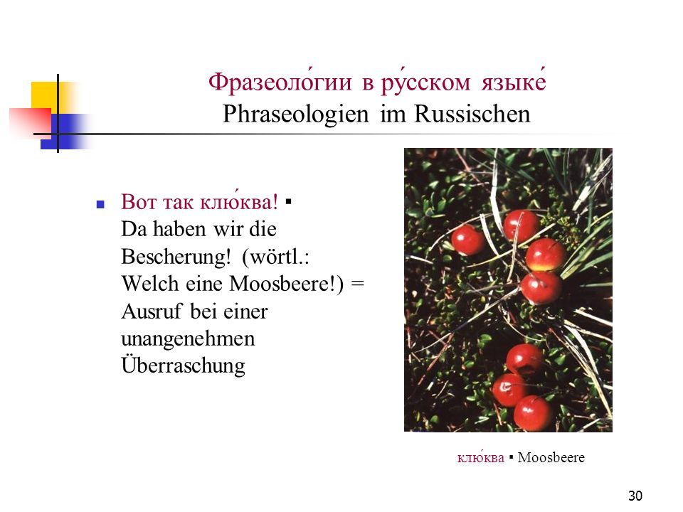 Фразеоло́гии в ру́сском языке́ Phraseologien im Russischen