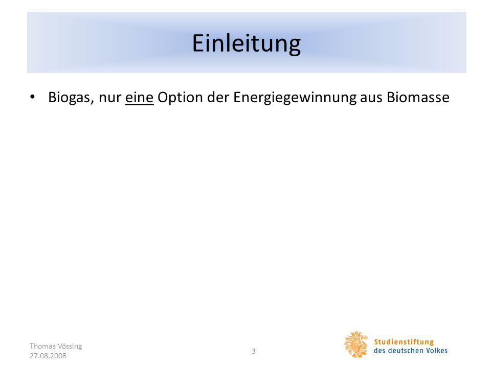 Einleitung Biogas, nur eine Option der Energiegewinnung aus Biomasse