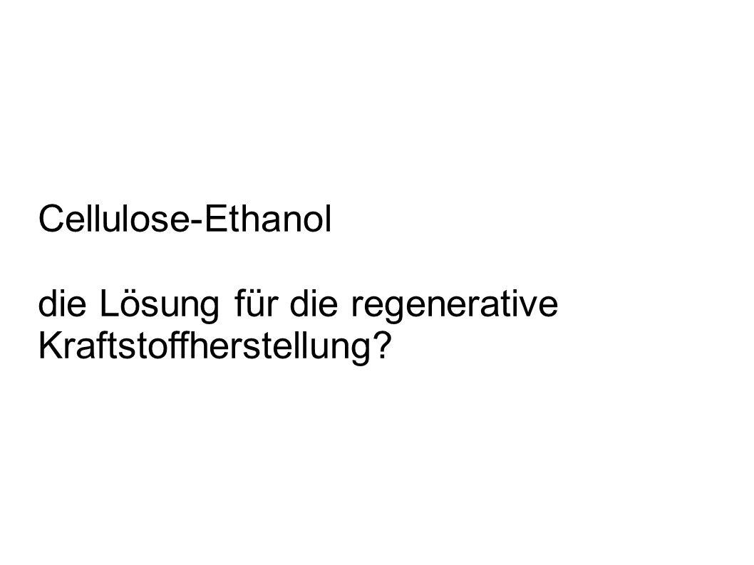 Cellulose-Ethanol die Lösung für die regenerative Kraftstoffherstellung