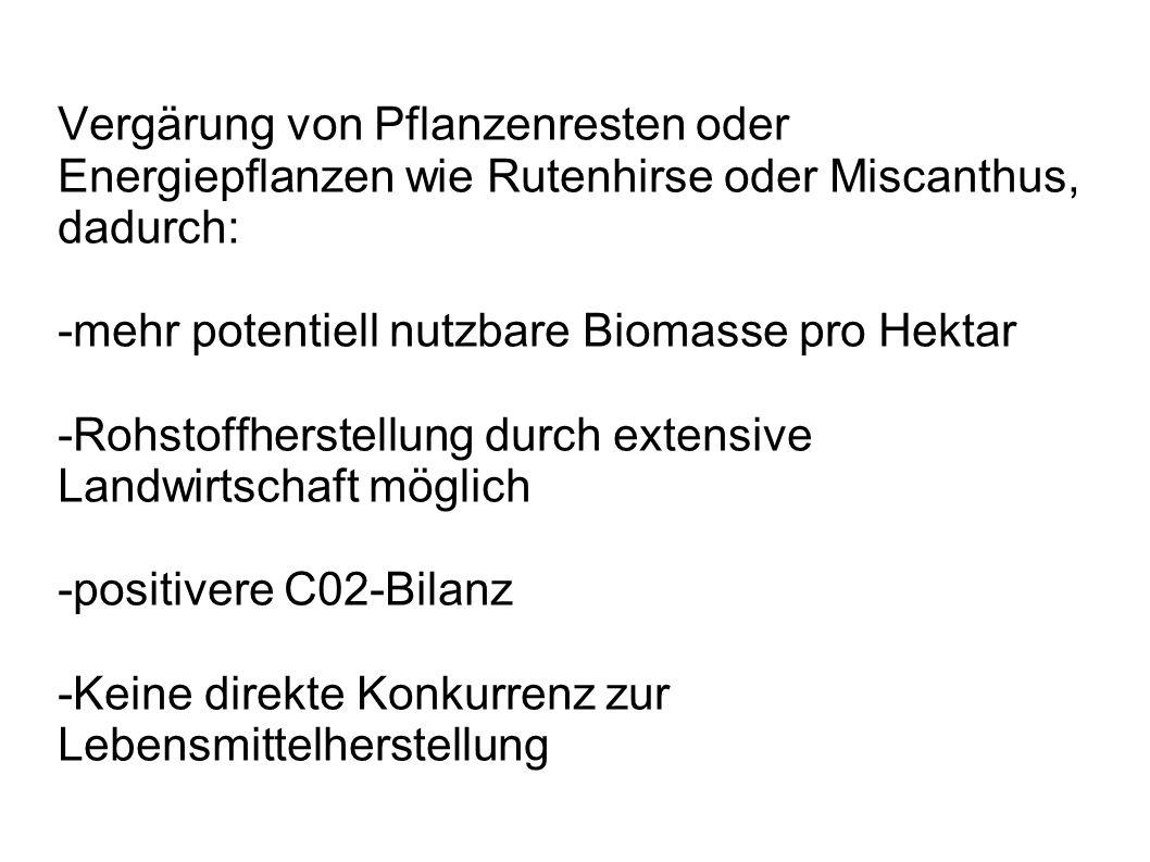 Vergärung von Pflanzenresten oder Energiepflanzen wie Rutenhirse oder Miscanthus, dadurch: