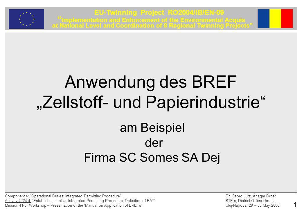 """Anwendung des BREF """"Zellstoff- und Papierindustrie"""