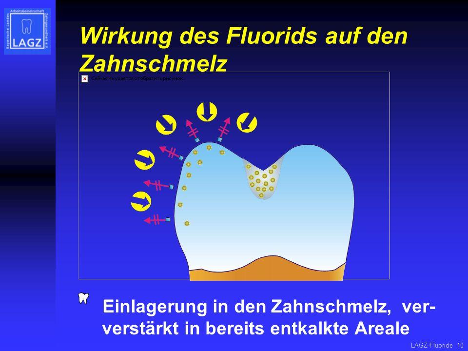 Wirkung des Fluorids auf den Zahnschmelz
