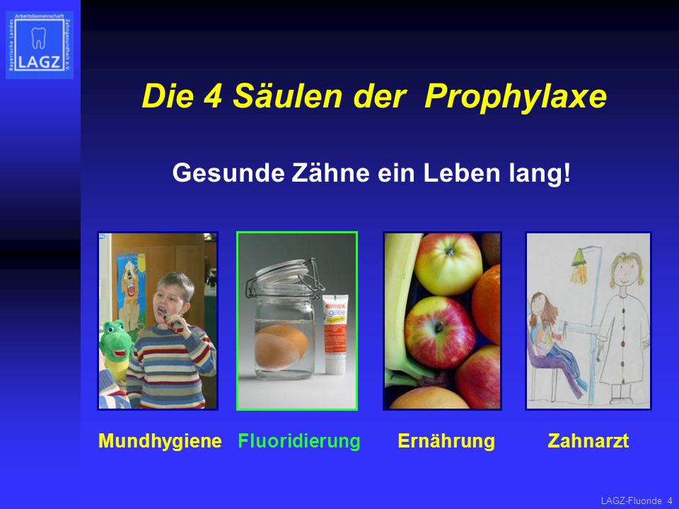 Die 4 Säulen der Prophylaxe