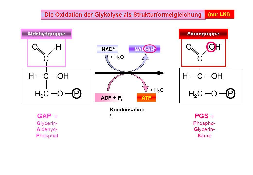 Die Oxidation der Glykolyse als Strukturformelgleichung