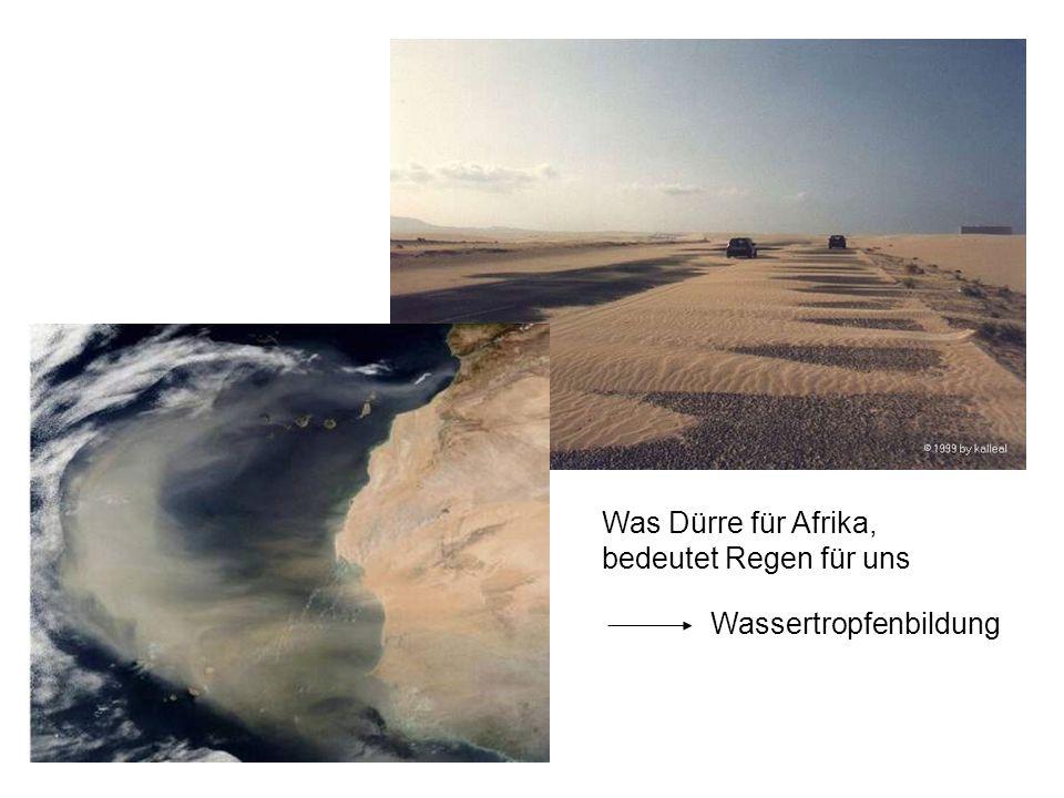 Was Dürre für Afrika, bedeutet Regen für uns