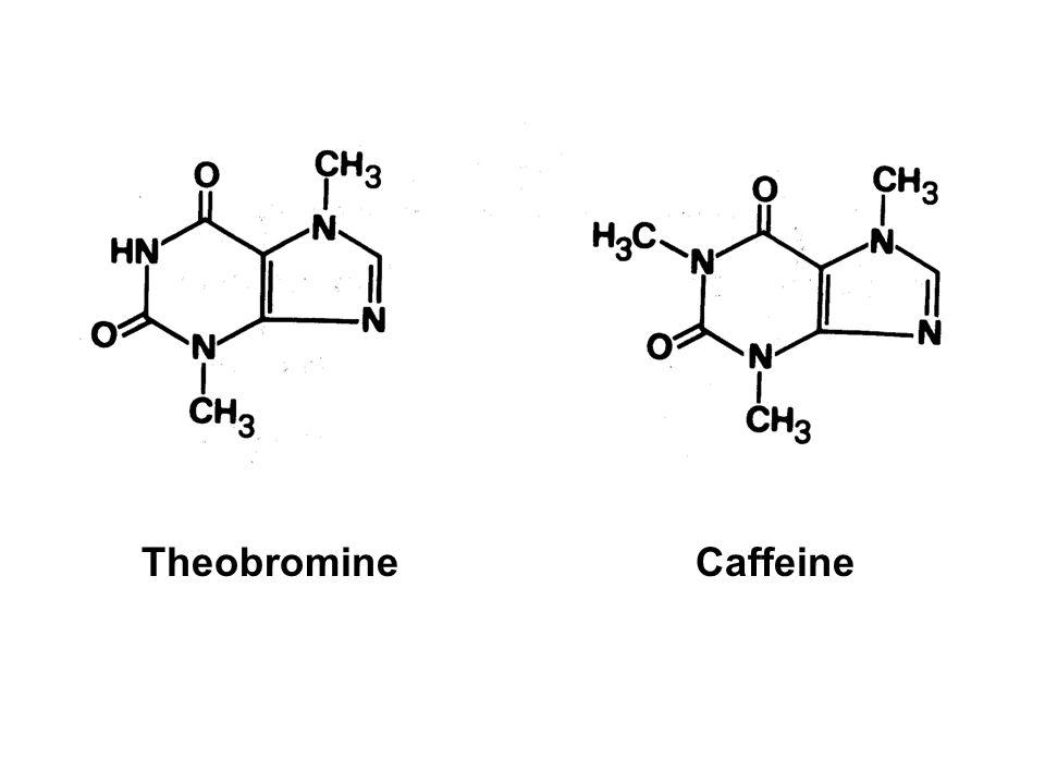 Theobromine Caffeine