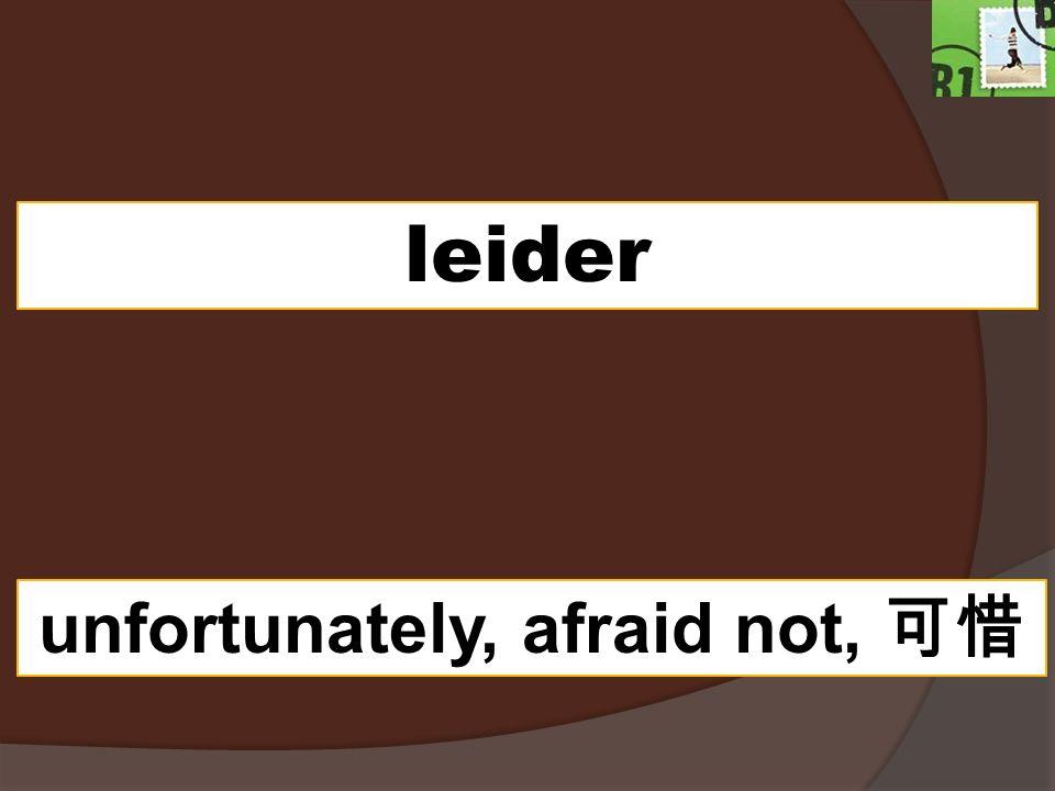 unfortunately, afraid not, 可惜