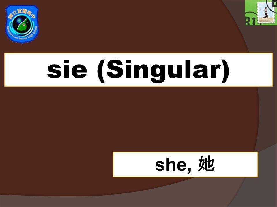 sie (Singular) she, 她