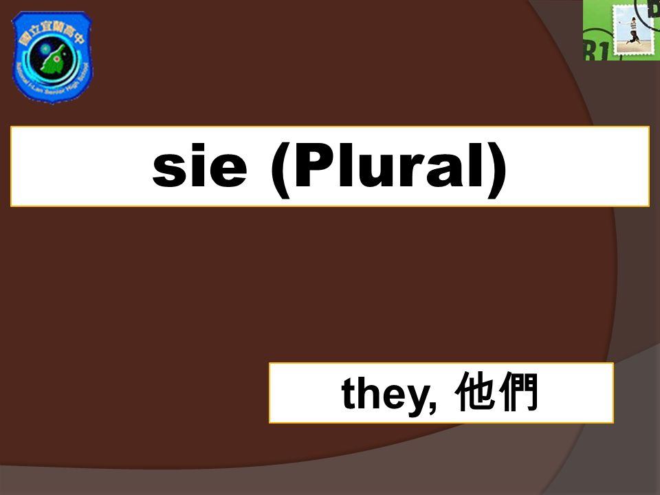 sie (Plural) they, 他們