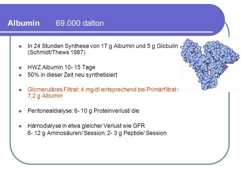 Albumin 69.000 dalton In 24 Stunden Synthese von 17 g Albumin und 5 g Globulin (Schmidt/Thews 1987)