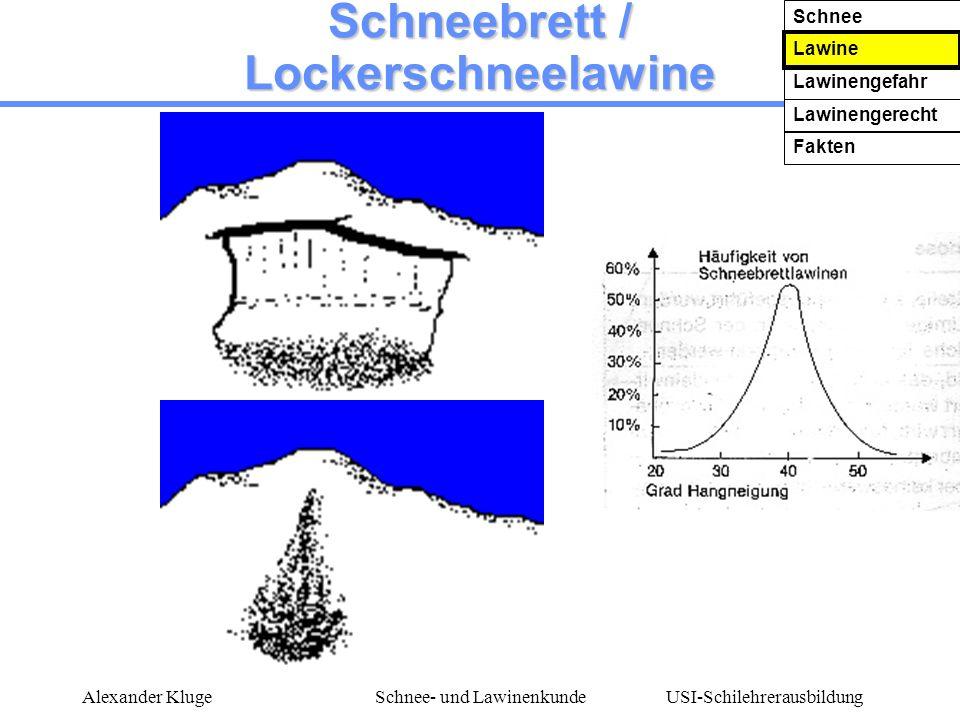 Schneebrett / Lockerschneelawine