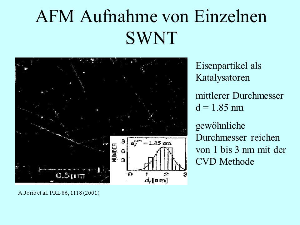 AFM Aufnahme von Einzelnen SWNT
