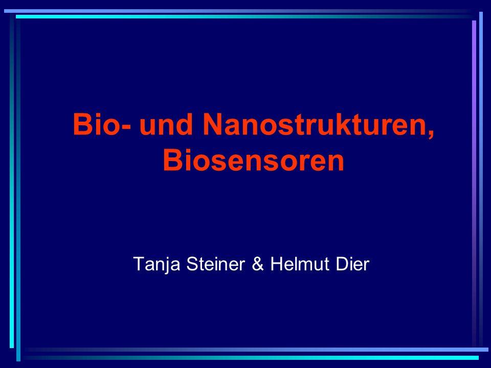 Bio- und Nanostrukturen, Biosensoren