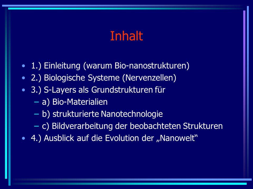 Inhalt 1.) Einleitung (warum Bio-nanostrukturen)