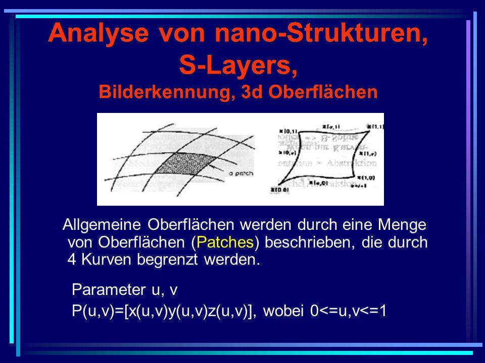 Analyse von nano-Strukturen, S-Layers, Bilderkennung, 3d Oberflächen