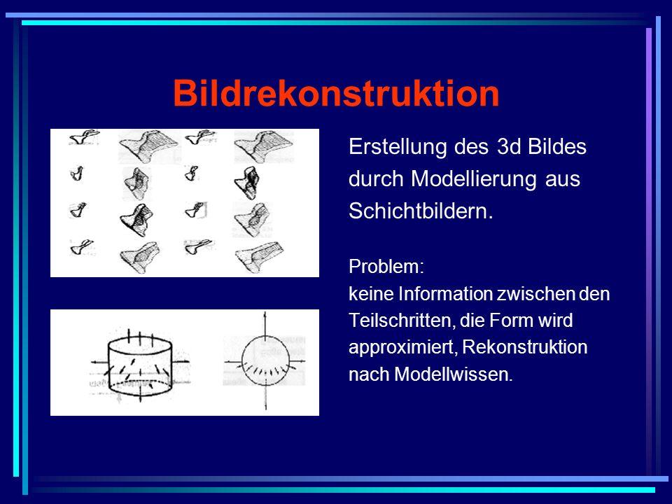 Bildrekonstruktion Erstellung des 3d Bildes durch Modellierung aus