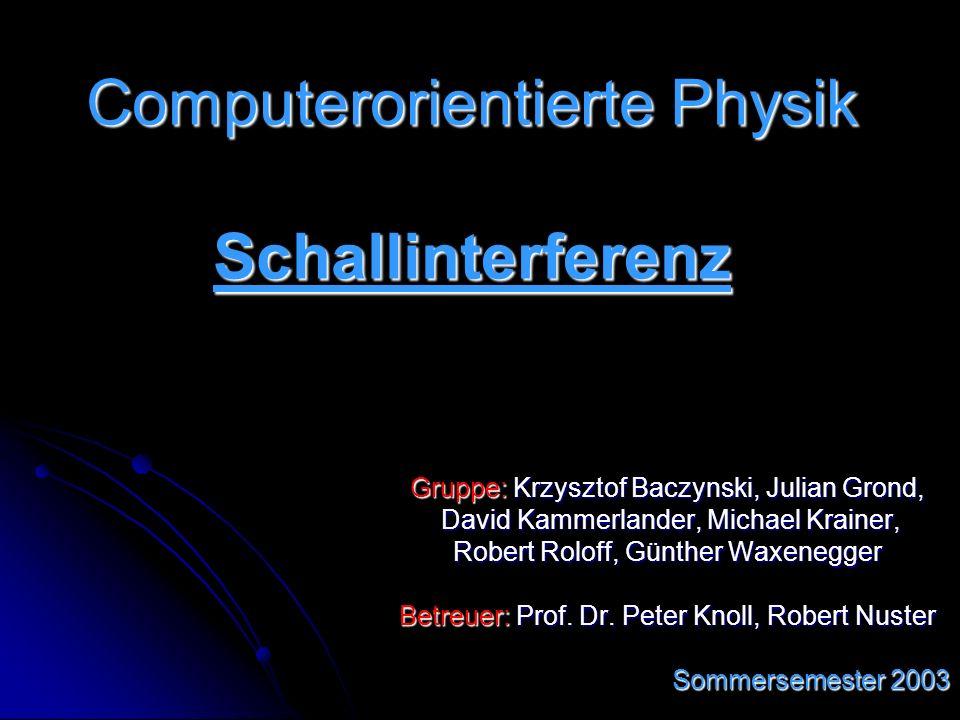 Computerorientierte Physik Schallinterferenz