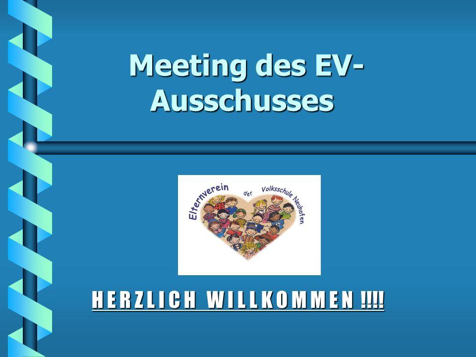 Meeting des EV-Ausschusses