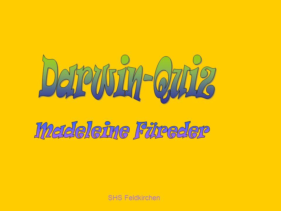 Darwin-Quiz Madeleine Füreder