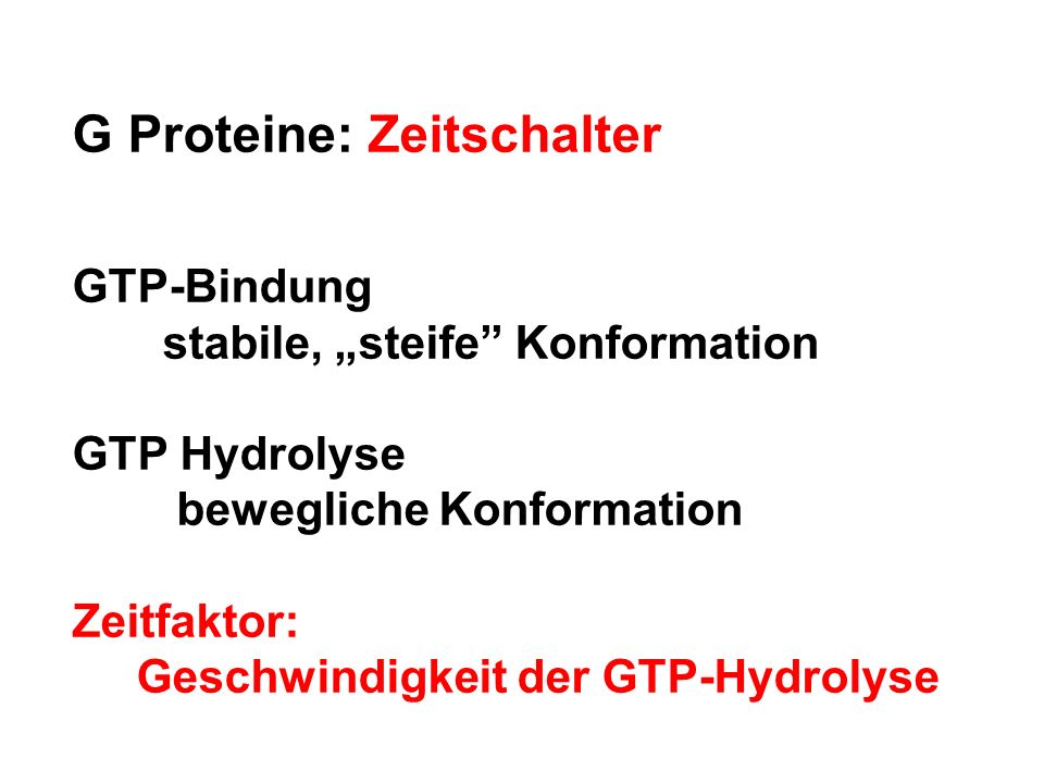 G Proteine: Zeitschalter