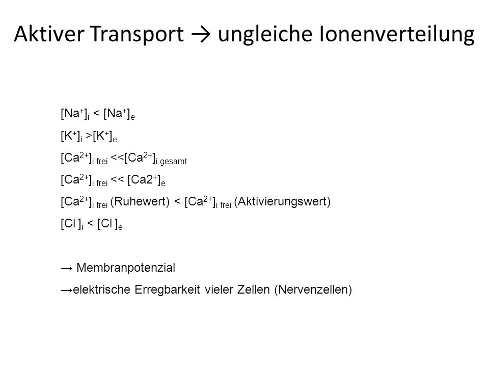 Aktiver Transport → ungleiche Ionenverteilung