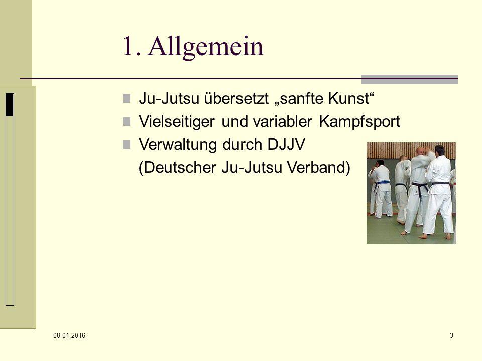 """1. Allgemein Ju-Jutsu übersetzt """"sanfte Kunst"""
