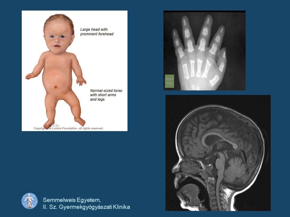 Semmelweis Egyetem, II. Sz. Gyermekgyógyászati Klinika