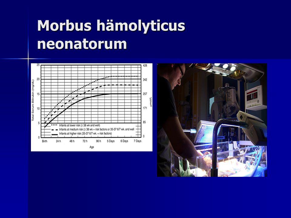 Morbus hämolyticus neonatorum