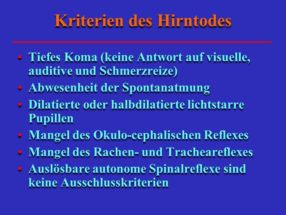 Kriterien des Hirntodes