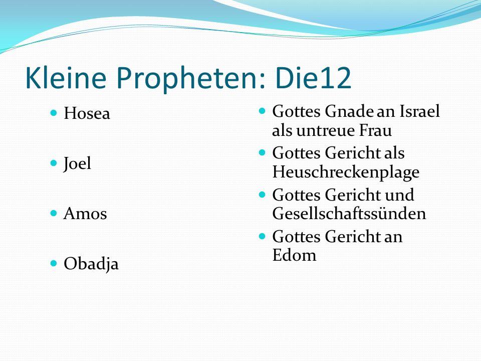 Kleine Propheten: Die12 Hosea Joel Amos Obadja