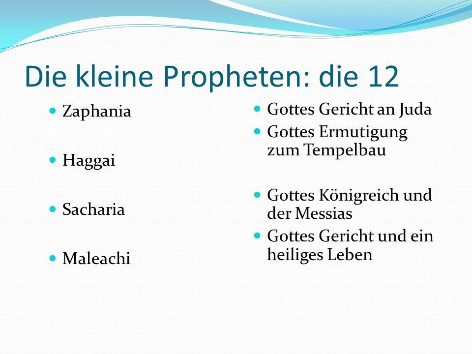 Die kleine Propheten: die 12