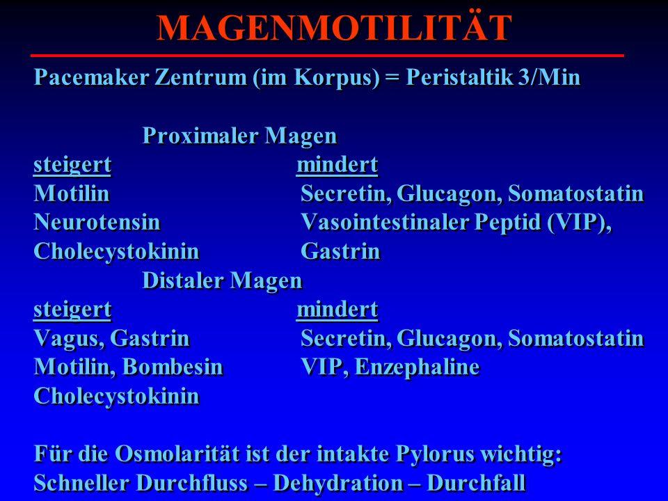 MAGENMOTILITÄT Pacemaker Zentrum (im Korpus) = Peristaltik 3/Min