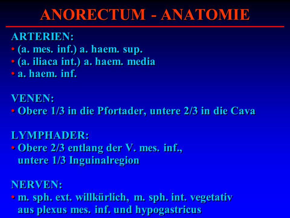 ANORECTUM - ANATOMIE ARTERIEN: (a. mes. inf.) a. haem. sup.