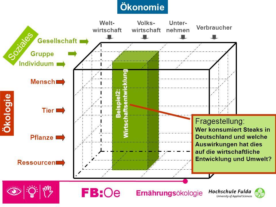 Beispiel2: Wirtschaftsentwicklung