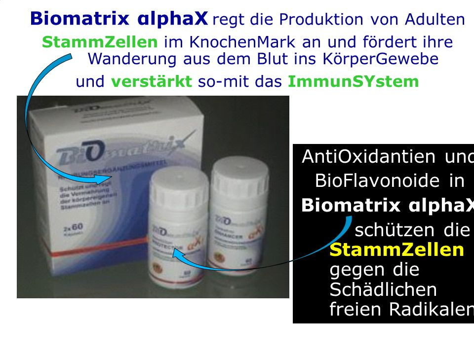 Biomatrix αlphaX regt die Produktion von Adulten