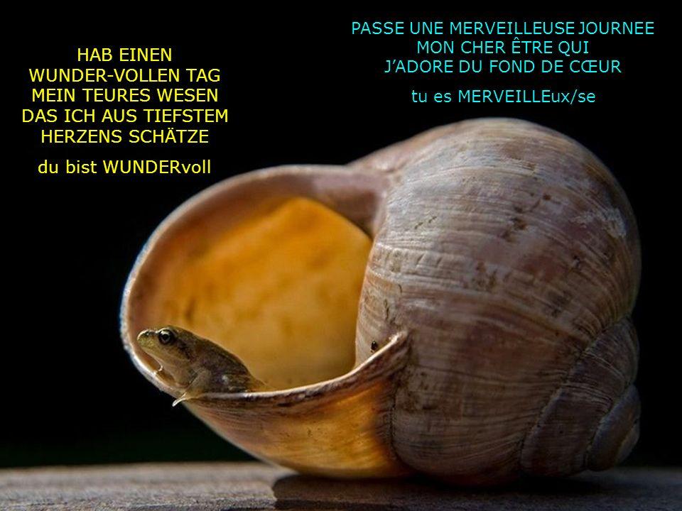 HAB EINEN WUNDER-VOLLEN TAG MEIN TEURES WESEN DAS ICH AUS TIEFSTEM