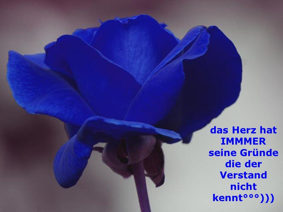 das Herz hat IMMMER seine Gründe die der Verstand nicht kennt°°°)))