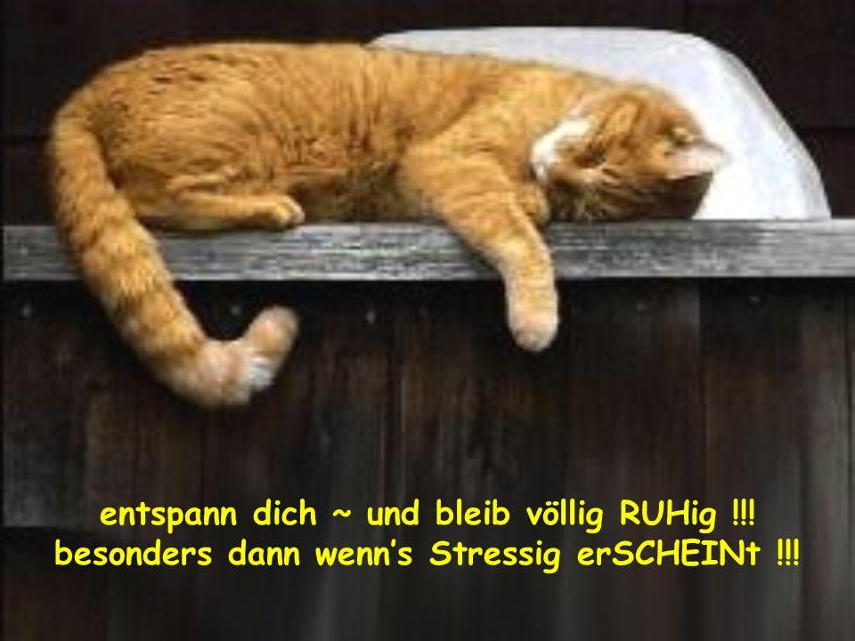 entspann dich ~ und bleib völlig RUHig !!!