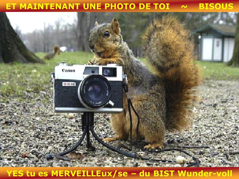 ET MAINTENANT UNE PHOTO DE TOI ~ BISOUS