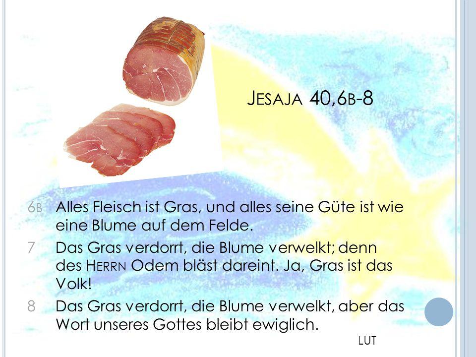 Jesaja 40,6b-8