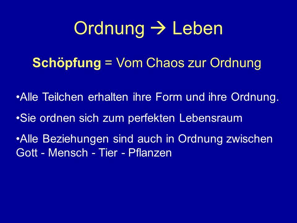 Ordnung  Leben Schöpfung = Vom Chaos zur Ordnung