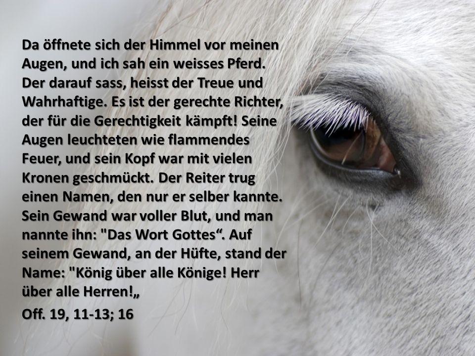 """Da öffnete sich der Himmel vor meinen Augen, und ich sah ein weisses Pferd. Der darauf sass, heisst der Treue und Wahrhaftige. Es ist der gerechte Richter, der für die Gerechtigkeit kämpft! Seine Augen leuchteten wie flammendes Feuer, und sein Kopf war mit vielen Kronen geschmückt. Der Reiter trug einen Namen, den nur er selber kannte. Sein Gewand war voller Blut, und man nannte ihn: Das Wort Gottes . Auf seinem Gewand, an der Hüfte, stand der Name: König über alle Könige! Herr über alle Herren!"""""""
