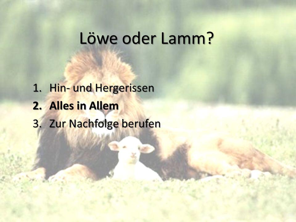 Löwe oder Lamm Hin- und Hergerissen Alles in Allem