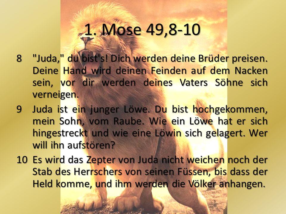 1. Mose 49,8-10