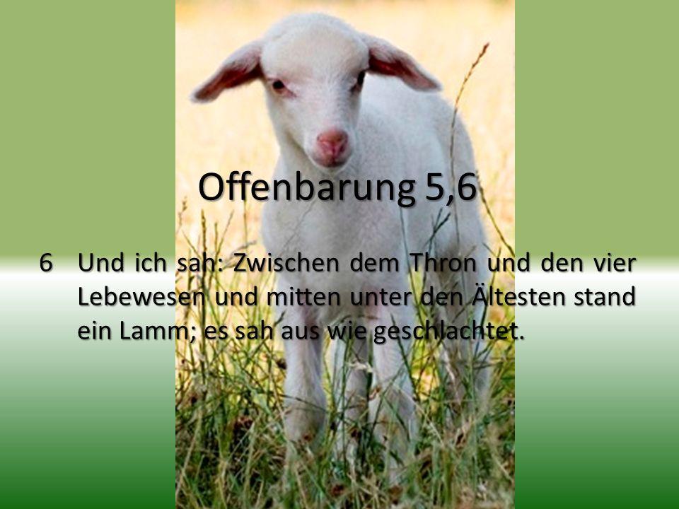 Offenbarung 5,6 6 Und ich sah: Zwischen dem Thron und den vier Lebewesen und mitten unter den Ältesten stand ein Lamm; es sah aus wie geschlachtet.