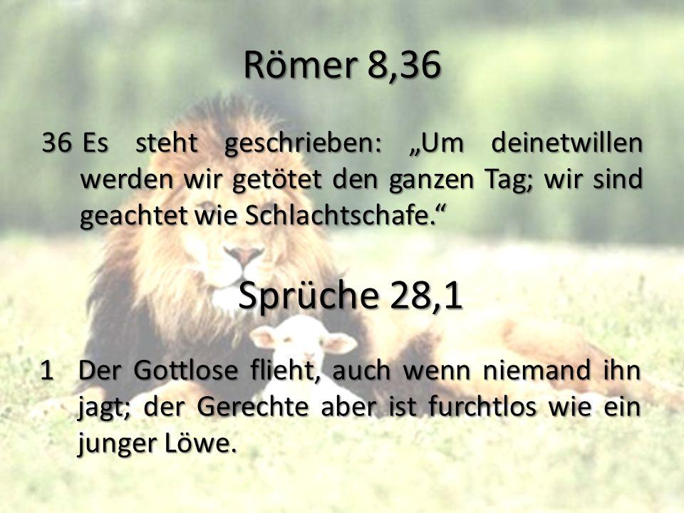 """Römer 8,36 36 Es steht geschrieben: """"Um deinetwillen werden wir getötet den ganzen Tag; wir sind geachtet wie Schlachtschafe."""