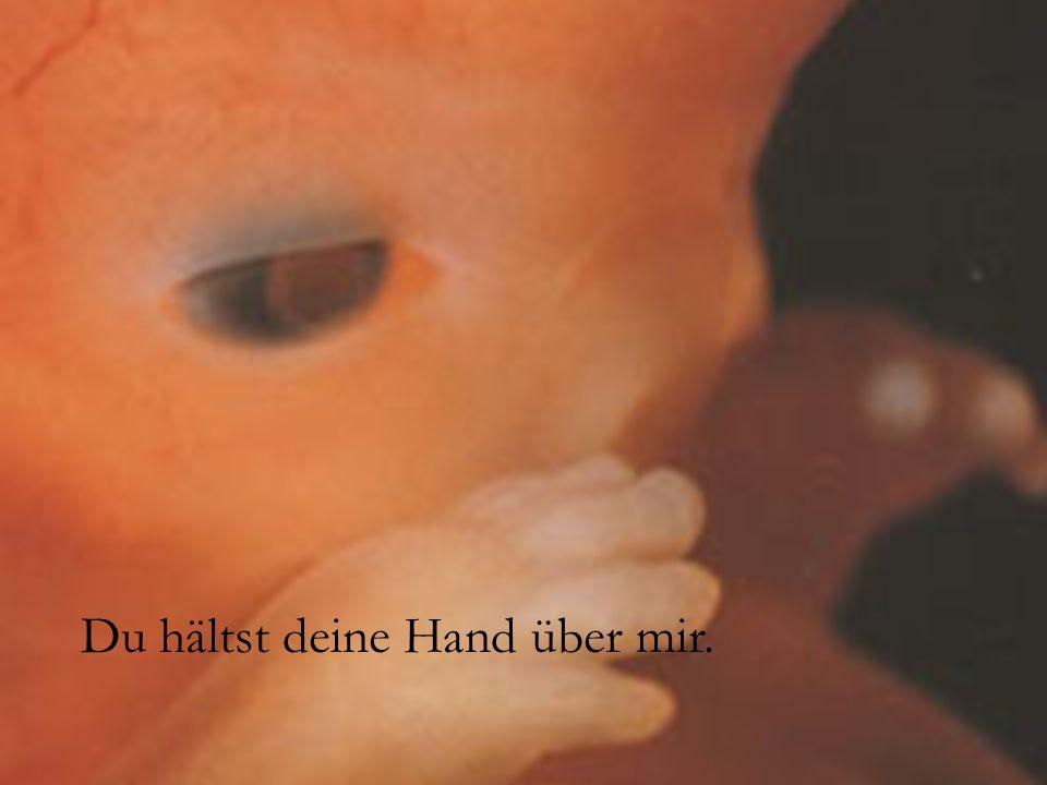 Du hältst deine Hand über mir.