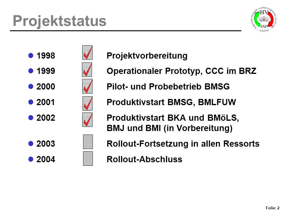 Projektstatus 1998 Projektvorbereitung