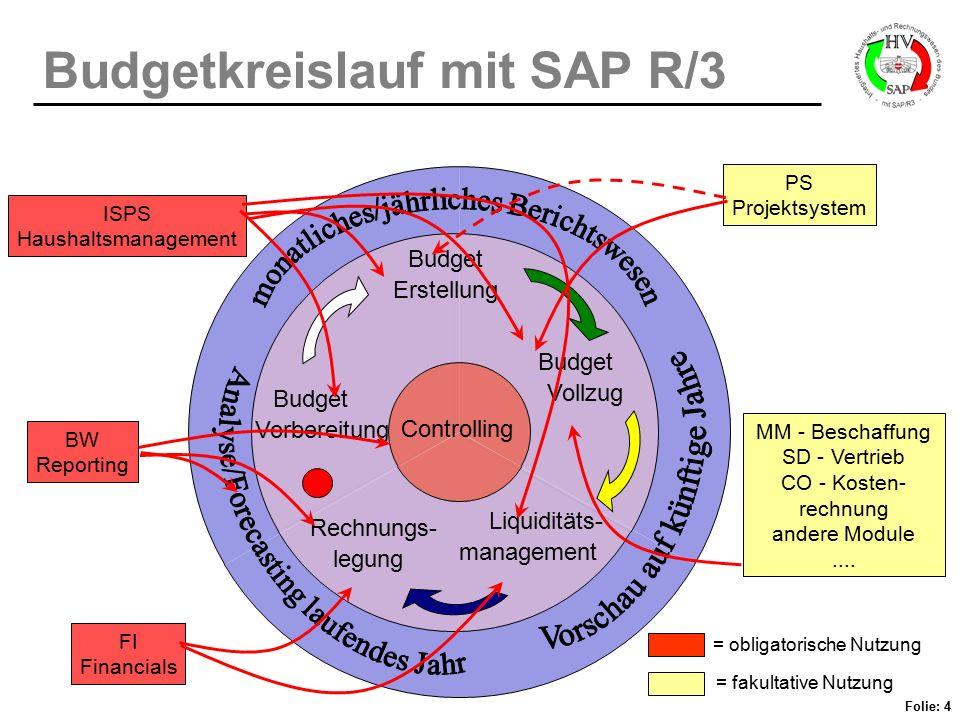 Budgetkreislauf mit SAP R/3